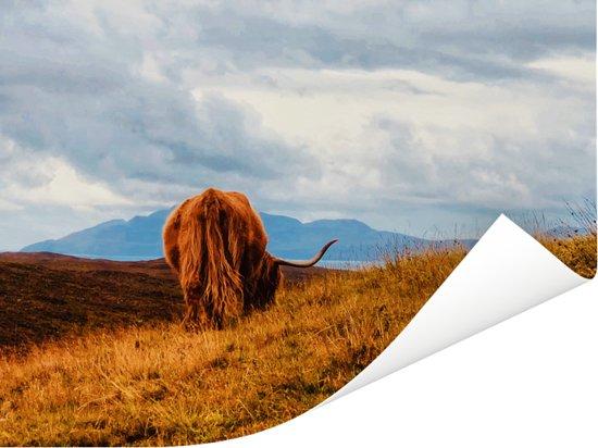 Een Schotse hooglander loopt over de bergen Poster 160x120 cm - Foto print op Poster (wanddecoratie woonkamer / slaapkamer) / Wilde dieren Poster XXL / Groot formaat!