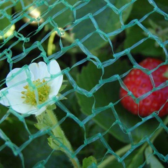 Tuinnet - Lichtgroen - 10 x 5 m