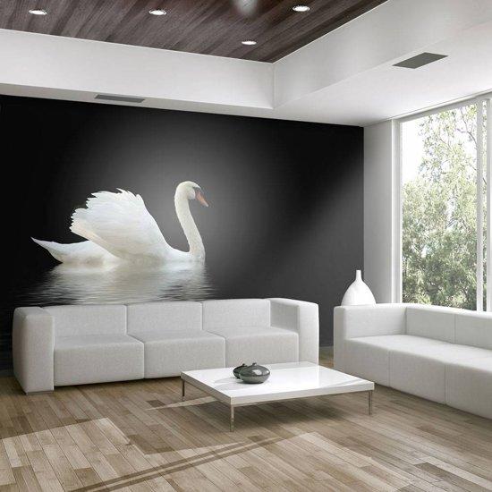 Fotobehang - zwaan (zwart en wit)