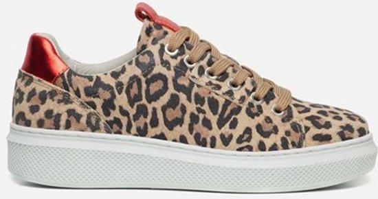 Ann Rocks Sneakers luipaard - Maat 40