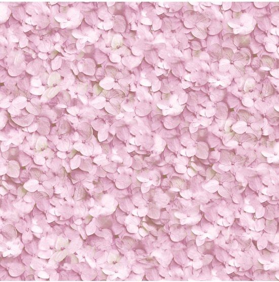 9200000082162636 - Roze Behang