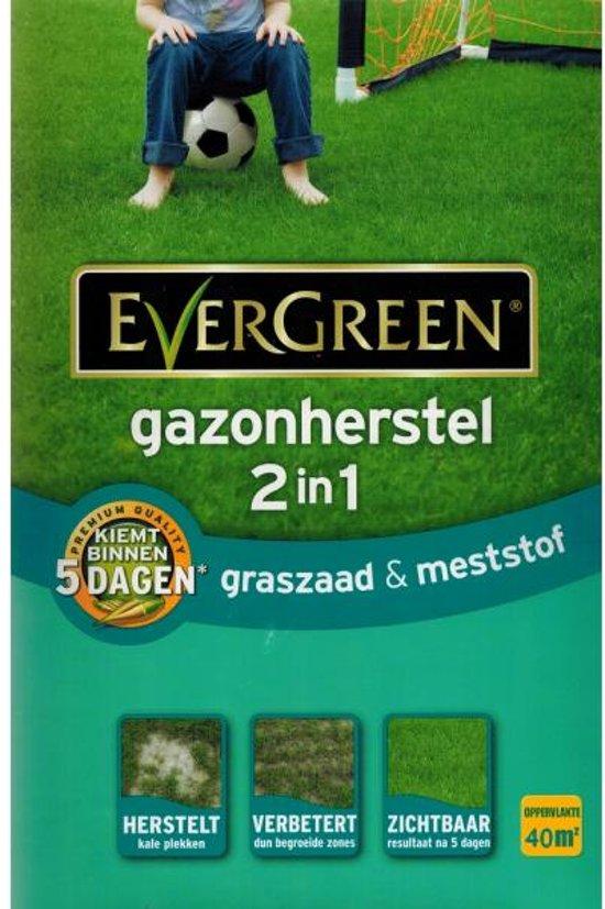 Gazonherstel graszaad + mest 2-IN-1 40 m²