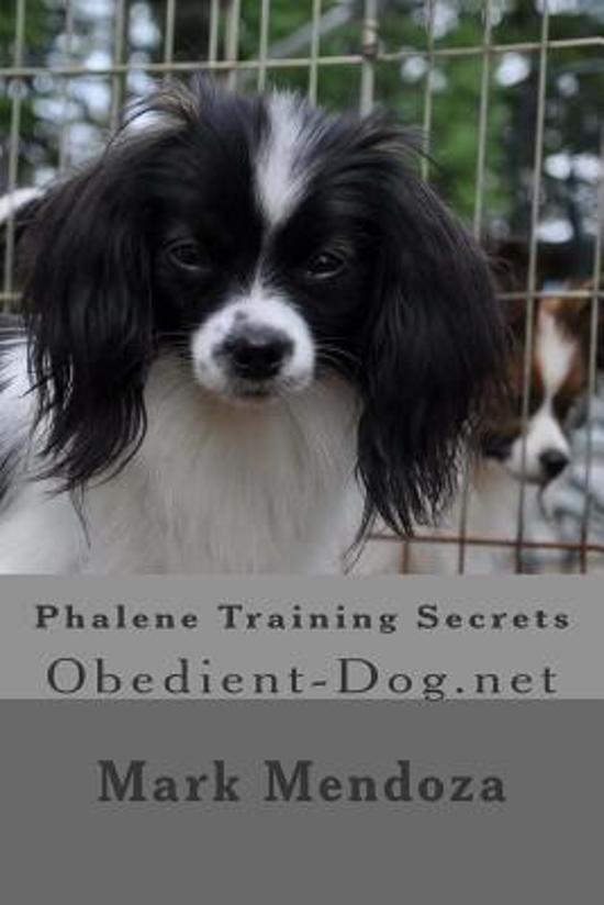 Phalene Training Secrets