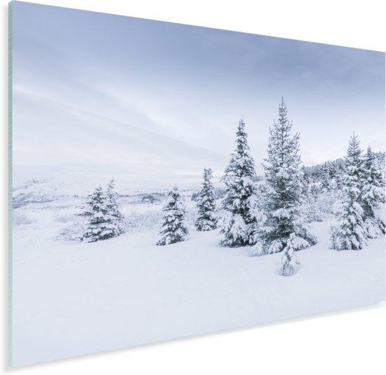 Besneeuwde bomen bij een winterlandschap in IJsland Plexiglas 80x60 cm - Foto print op Glas (Plexiglas wanddecoratie)