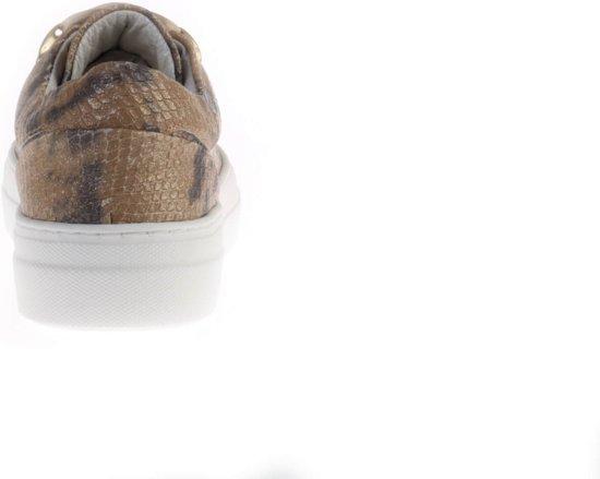Python Gouden D1278 Hip Sneaker Gouden Gouden D1278 Python Sneaker Hip 8qRxw8F6