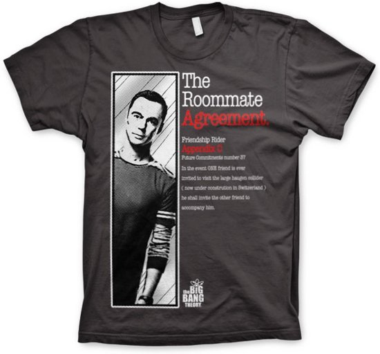 THE BIG BANG THEORY - T-Shirt The Roommate Agreement - Grey (XXL)