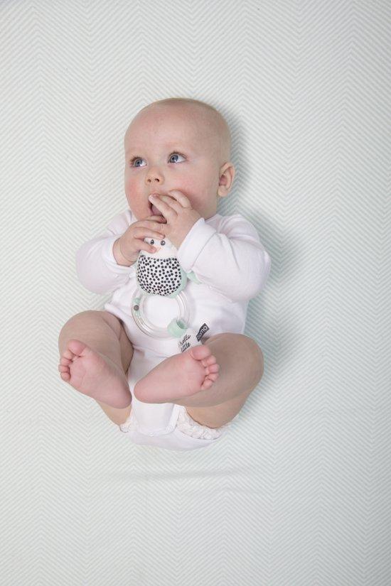 Hello Little One Ringrammelaar
