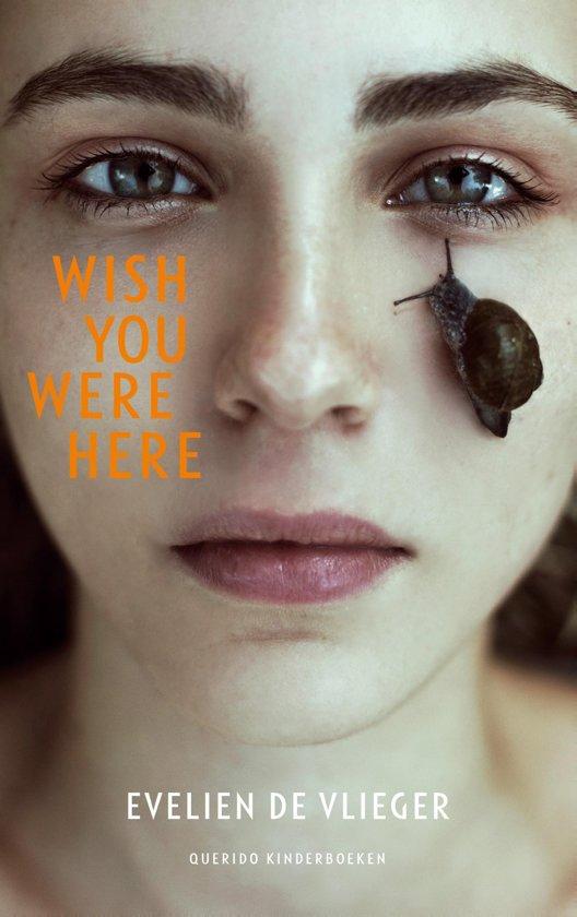 Afbeeldingsresultaat voor wish you were here boek bol