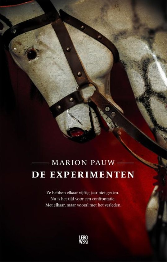 Boek cover De experimenten van Marion Pauw (Paperback)