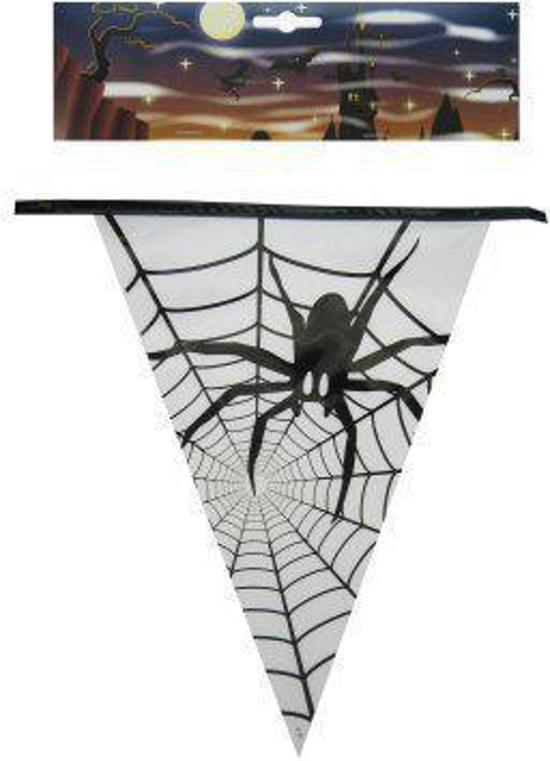 Vlaggenlijn spin 6 meter