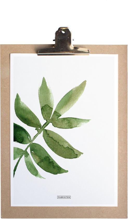 Poster - Print A4 - Botanisch - Ash - Blad - Groen - Fabrikten