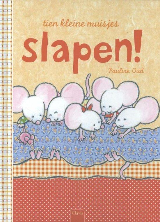 Tien kleine muisjes slapen