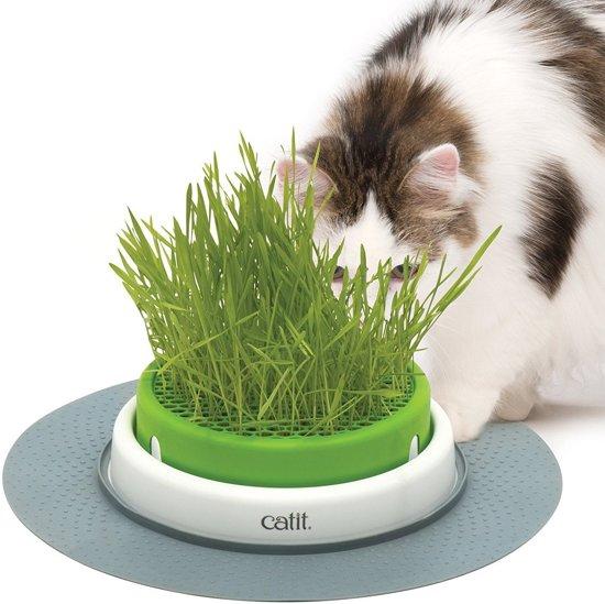 Cat-it kattengras planter senses 2.0 + 1 doosje graszaad