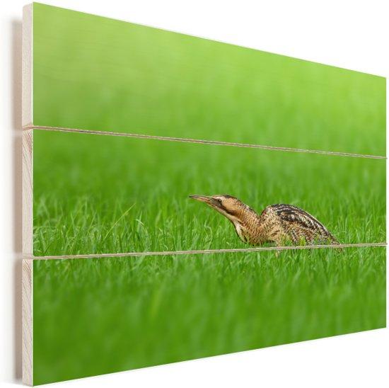 Een roerdomp loopt laag door de graslanden Vurenhout met planken 120x80 cm - Foto print op Hout (Wanddecoratie)