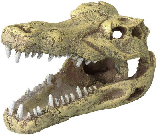 Ebi Decor Schedel Krokodil S Small 13.5x6.5x7.5 cm