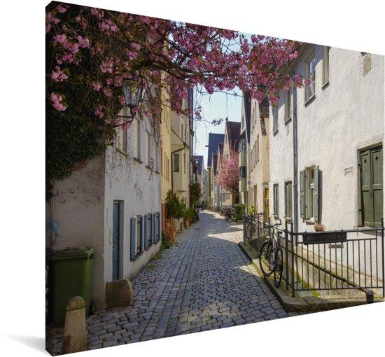 Kleine steeg met mooie roze bloem in het Duitse Augsburg Canvas 60x40 cm - Foto print op Canvas schilderij (Wanddecoratie woonkamer / slaapkamer) / Europese steden Canvas Schilderijen