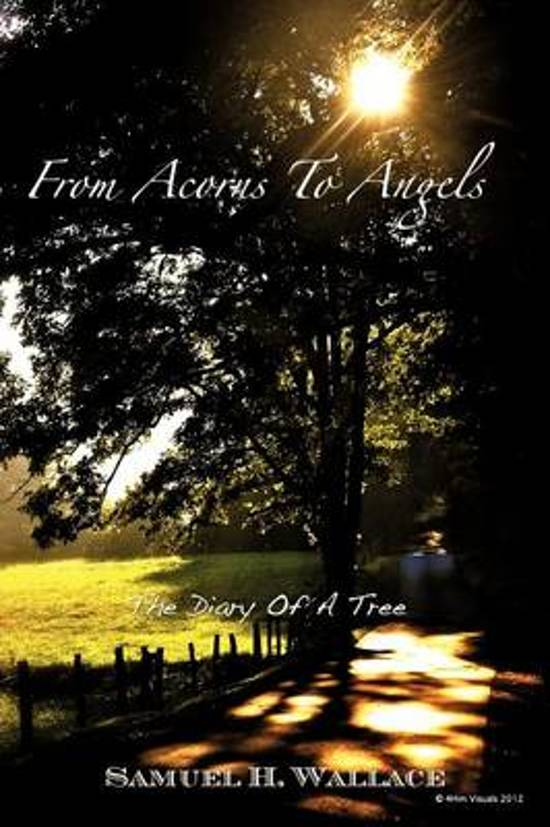 From Acorns to Angels