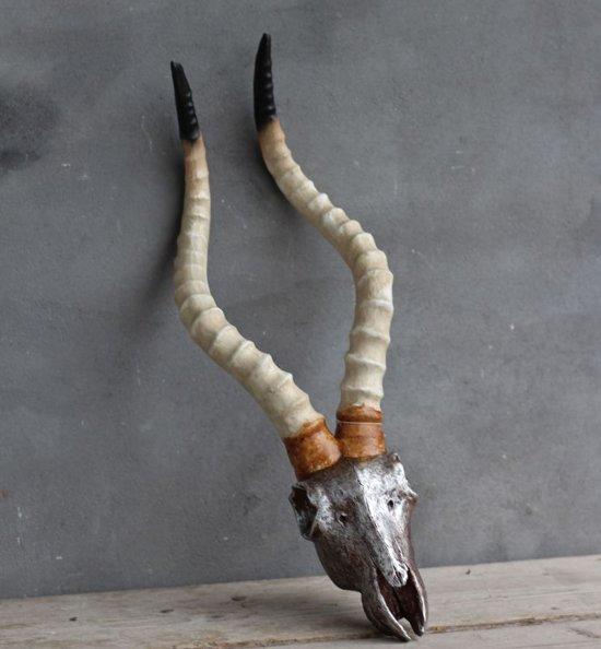 Antilope gewei skull schedel for Gewei kunststof