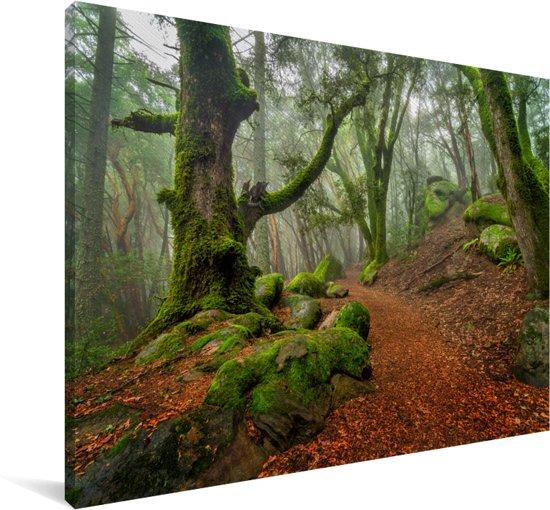 Rotsen en bomen in de bergen van Santa Cruz Californië Canvas 180x120 cm - Foto print op Canvas schilderij (Wanddecoratie woonkamer / slaapkamer) XXL / Groot formaat!