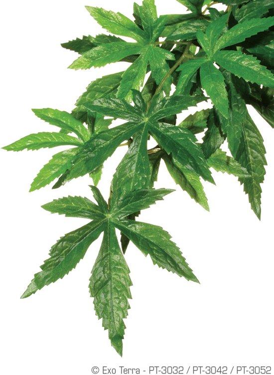 Exo terra jungle plant - abuliton