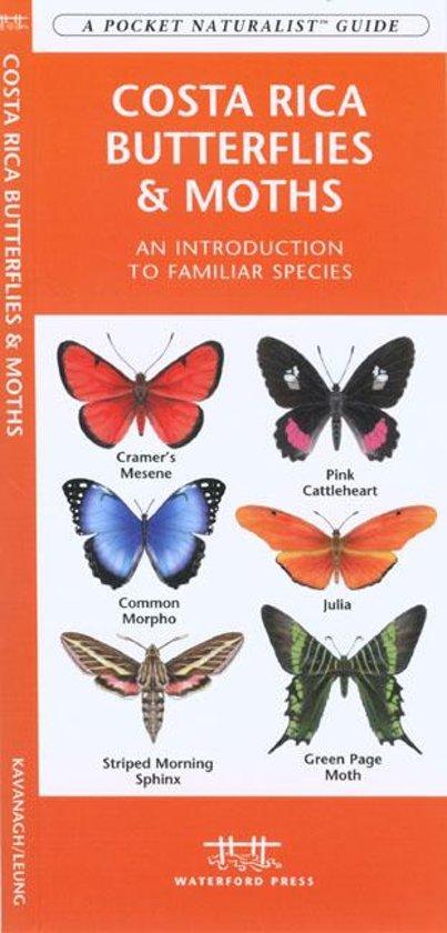 Costa Rica Butterflies & Moths cover