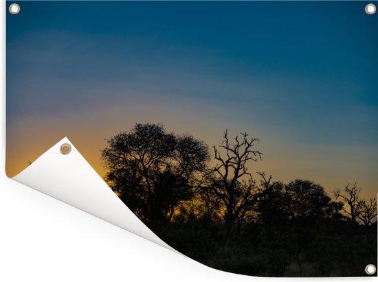 Silhouet van bomen bij zonsondergang in Krugerpark Zuid-Afrika Tuinposter 160x120 cm - Tuindoek / Buitencanvas / Schilderijen voor buiten (tuin decoratie) XXL / Groot formaat!