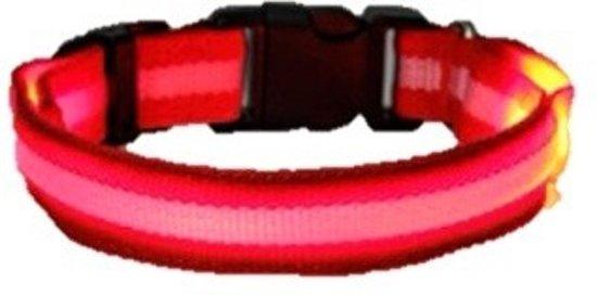 LED honden halsband - Rood L