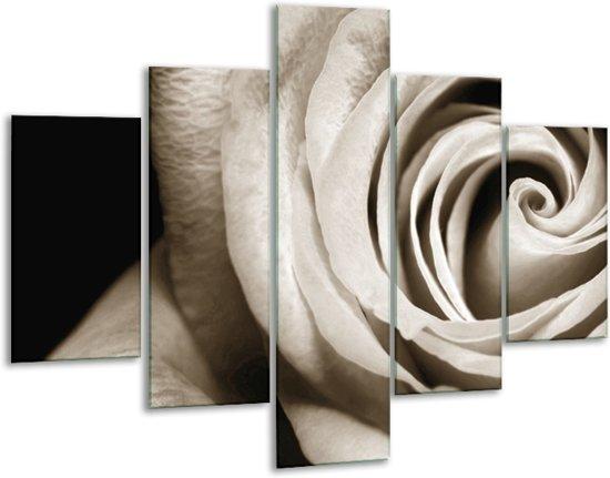 Glas schilderij Roos, Bloem | Sepia, Bruin, Zwart | 100x70cm 5Luik | Foto print op Glas |  F006640