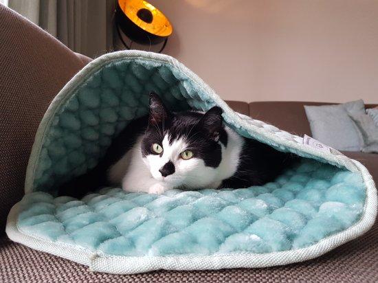 Noseys Cats - Kattenslaapzak - 60x40cm - Antraciet - premium