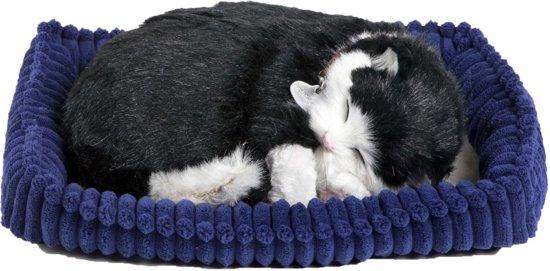 Perfect Petzzz Zwart-Witte Kat
