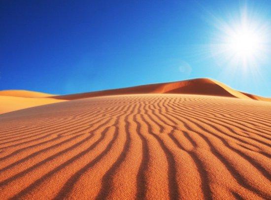 Papermoon Deserts Sune Vlies Fotobehang 250x186cm 5-Banen