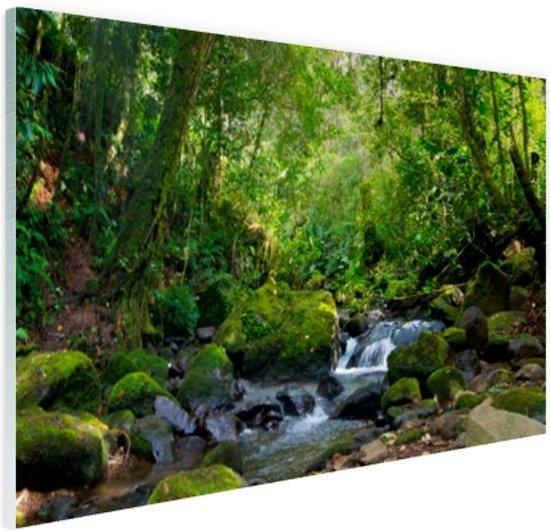 FotoCadeau.nl - Regenwoudkreek Glas 90x60 cm - Foto print op Glas (Plexiglas wanddecoratie)