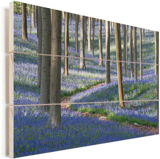 Weg in het bos met Engelse sterhyacinten Vurenhout met planken 120x80 cm - Foto print op Hout (Wanddecoratie)