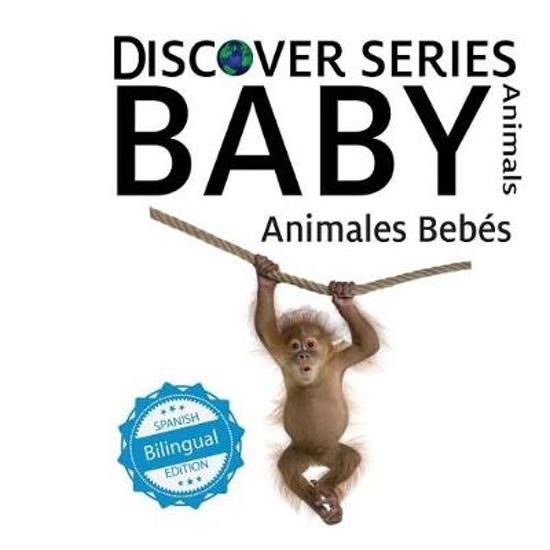 Animales Bebes/ Baby Animals