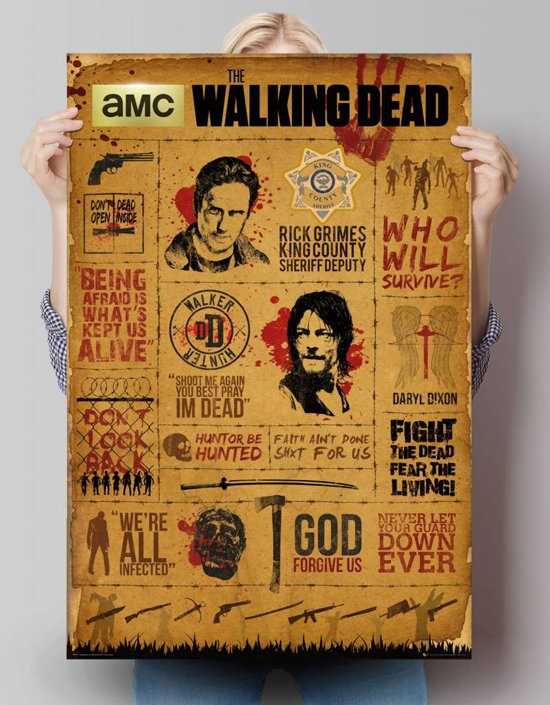 REINDERS The Walking Dead - infographic - Poster - 61x91,5cm