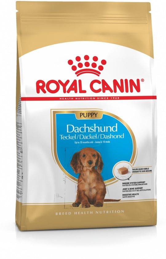 Royal Canin Dachshund Junior - Hondenvoer - 1,5 kg