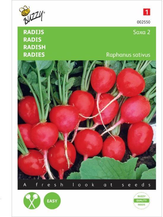 Buzzy® Radijs Saxa 2