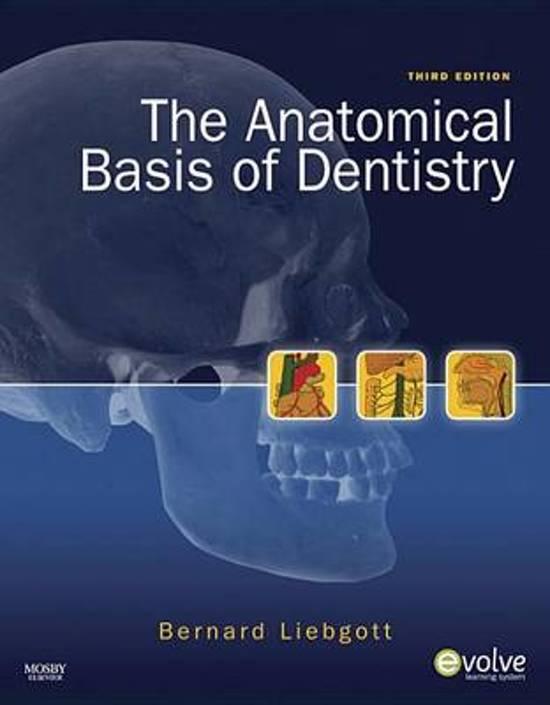 Bol The Anatomical Basis Of Dentistry E Book Ebook