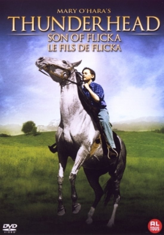 Cover van de film 'Thunderhead - Son Of Flicka'