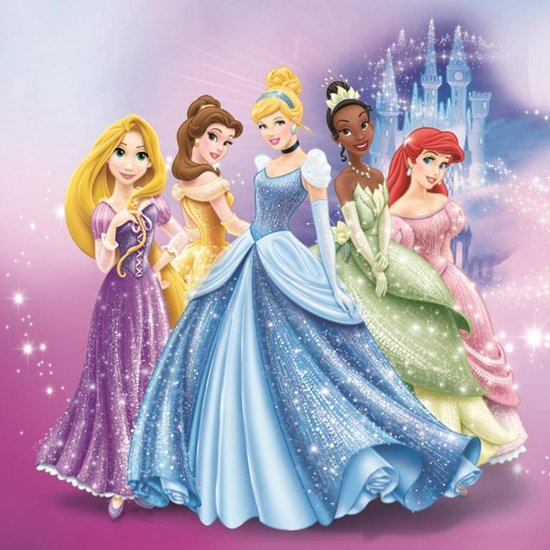 Disney prinsessen cinderella 39 s castle canvas - Image princesse disney ...