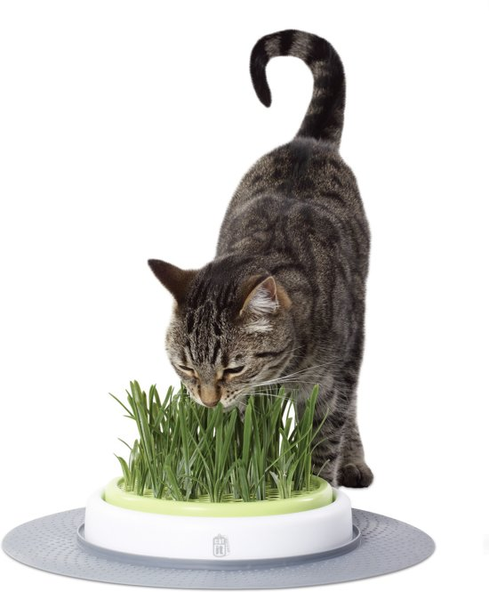 Catit Design Senses Grass Garden Kit - Kattengras - 1