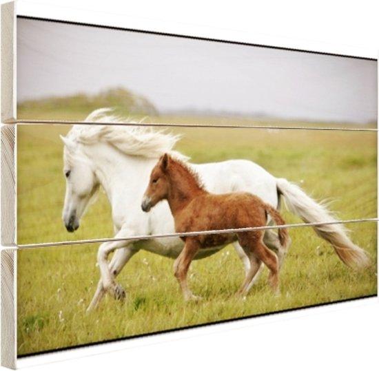 Paard en veulen rennen Hout 60x40 cm - Foto print op Hout (Wanddecoratie)