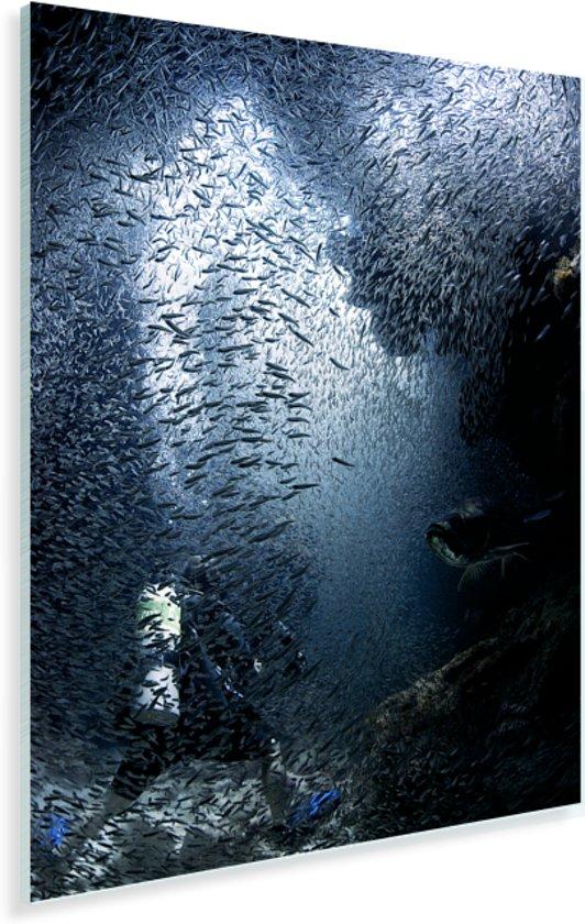 Duiker wordt in de grotten bij Grand Cayman ondergedompeld door vissen Plexiglas 120x160 cm - Foto print op Glas (Plexiglas wanddecoratie) XXL / Groot formaat!