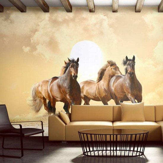 Paarden Behang Posterbehang.Bol Com Fotobehang Galopperende Paarden Beige Bruin