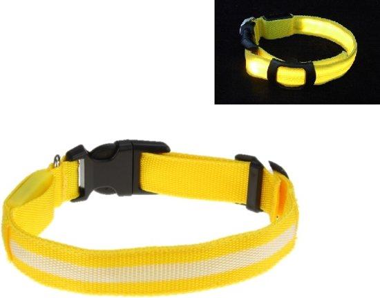LED Halsband GEEL XS