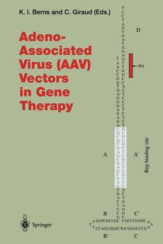 viruses in human gene therapy vos j