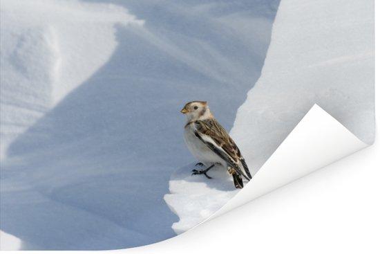 Een sneeuwgors loopt door de sneeuw Poster 180x120 cm - Foto print op Poster (wanddecoratie woonkamer / slaapkamer) XXL / Groot formaat!