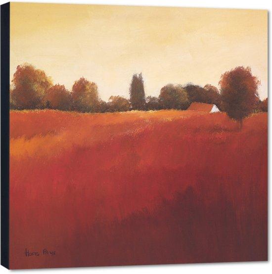Scarlet Landscape lll – 50x50 cm – Hans Paus – PixaPrint – AB0332-1