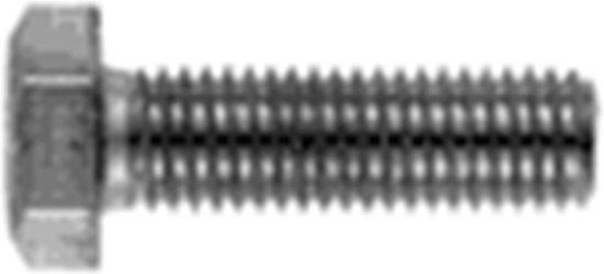 Huismerk - Zeskanttapbout DIN 933 RVS A2
