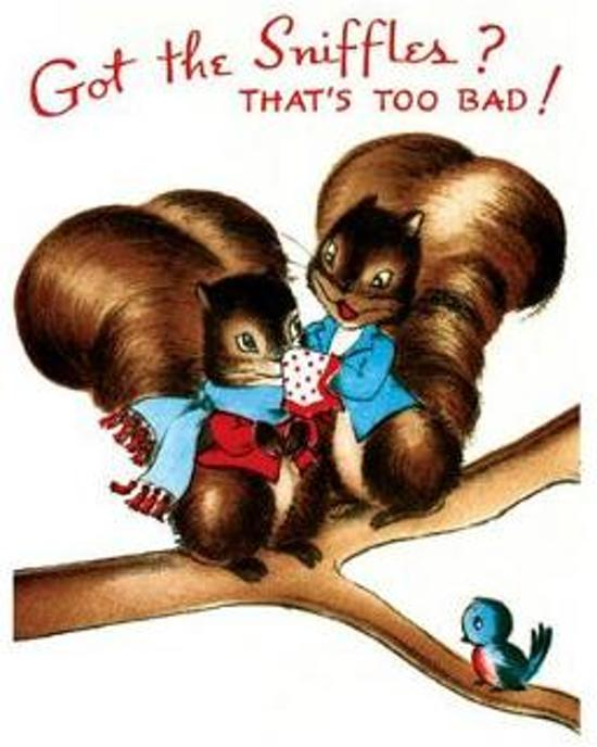 Afbeelding van het spel Squirrel Family - Get Well Greeting Card